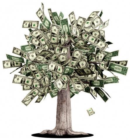Foto: Rahasia Menciptakan Pohon Uang