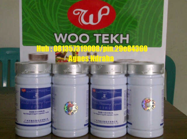 Foto: Distributor Pelangsng Wsc Biolo Wootekh