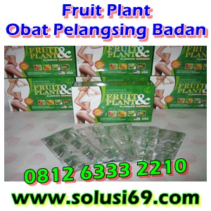 Foto: Obat Pelangsing Badan Fruit Plant