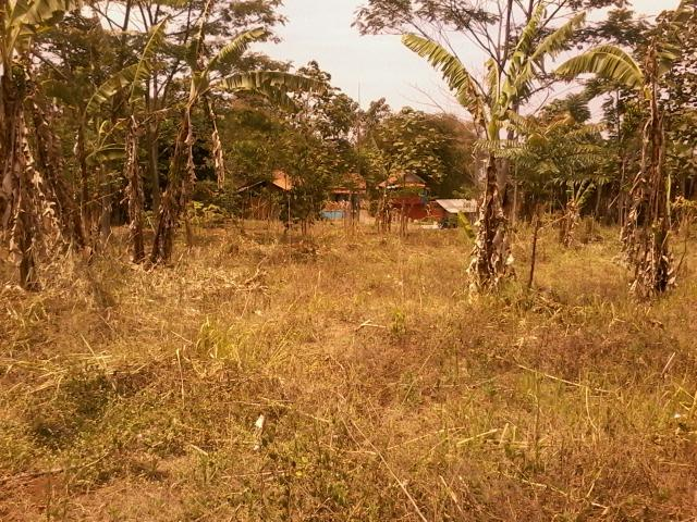 Foto: Tanah Kavling Diangsur