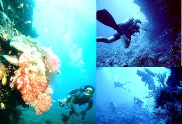 Foto: Pulau Pelangi Pulau Resort