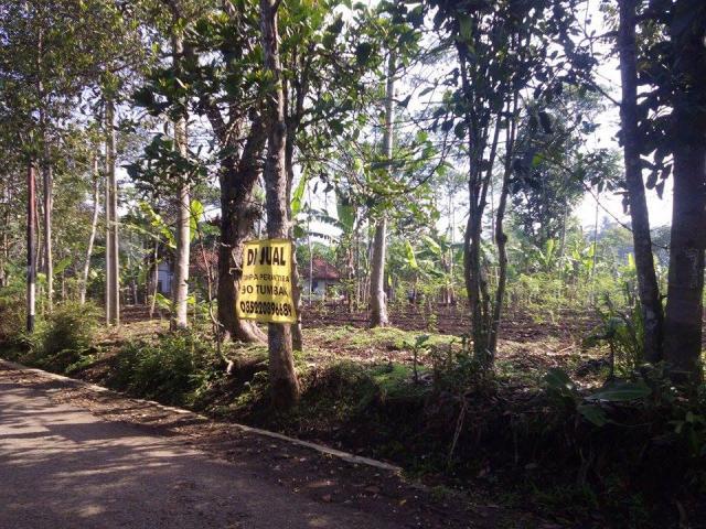 Foto: Jual Cepat Tanah Strategis Jatinangor, Raharja Tanjungsari