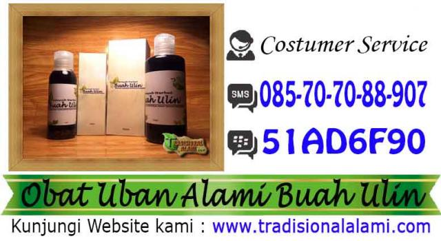 Foto: Penghitam Rambut, Rambut, Uban , Minyak Buah Ulin, Kalimantan