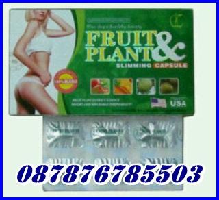 Foto: Pelangsing Badan Fruit N Plant