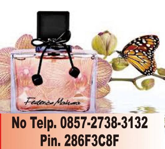 Foto: Distributor Parfum Pria, Parfum Wanita Dan Anak