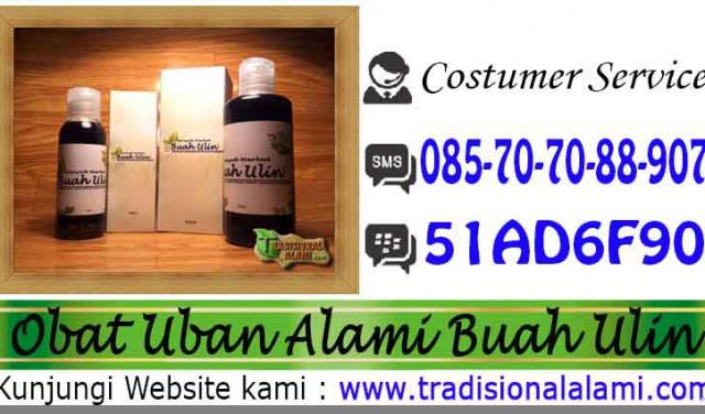 Foto: Rambut, Uban, Rambut Rontok, Solusi, Herbal, Minyak Buah Ulin.