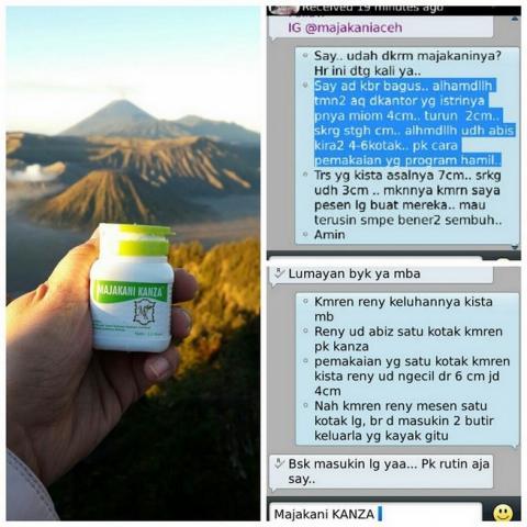 Foto: Obat Herbal Untuk Kista