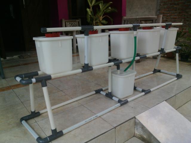 Foto: Jual Starterkit Hidroponik Wick Sistem atau NFT System Di Sidoarjo Surabaya