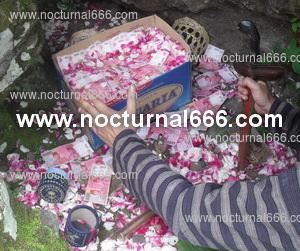 Foto: Pesugihan Jual Musuh Nyai Blorong Cair Di Tmp 1 Mlm