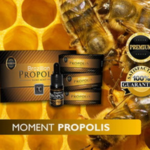 Foto: Propolis Moment Nano Mint
